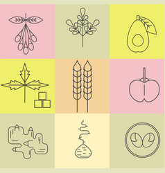 superfood line icons set color background vector image vector image