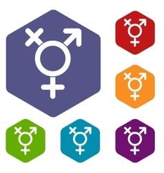 Transgender sign icons set vector