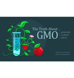 Gmo genetically modified vector