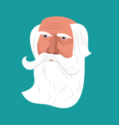Grandfather with gray beard face isolated head vector
