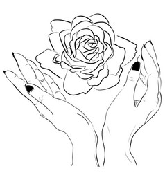 Hands holding a rose flower isolated outline vector