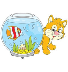 Kitten and fish vector