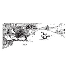 Sheep and duck vintage vector