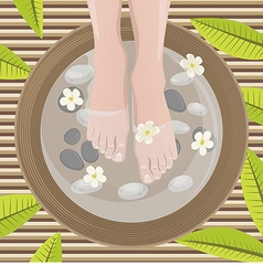 Female feet vector