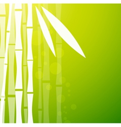 Bamboo green background vector