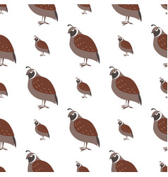 cartoon quail seamless pattern on white vector image
