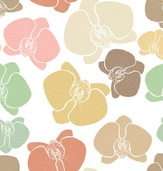 Orchids6 vector image