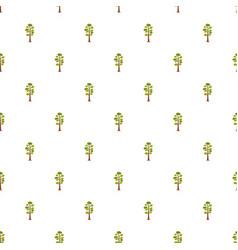 pine tree pattern seamless vector image