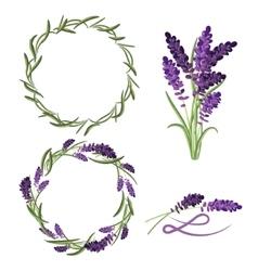 Provence lavender flower bouquet set vector image