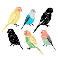 Set of the colorful hand drawn parrots vector