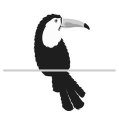 Single toucan icon vector