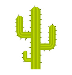 green cactus icon isolated vector image