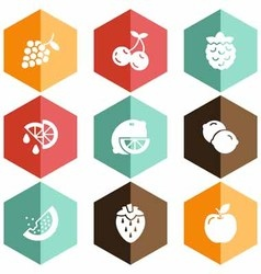 Solid icons fruits vector