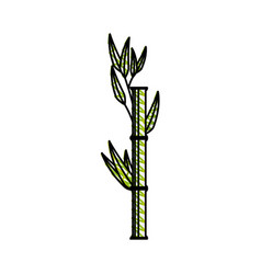 Bamboo japanese tree vector