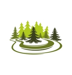 Forest glade with spruces on green grassy meadow vector