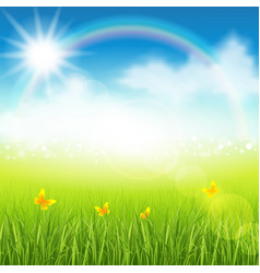 summer meadow with grass vector image vector image
