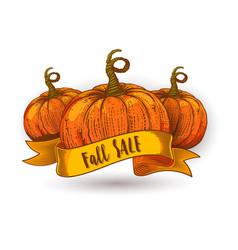 Fall sale calligraphy on orange ribbon vector