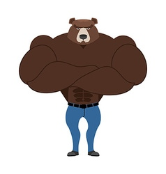 Strong Bear with big muscles Powerful wild beast vector image vector image