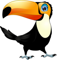 Merry toucan bird vector