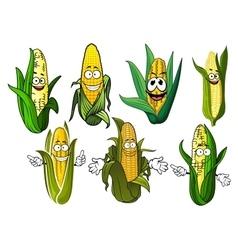 Cartoon corn cobs with golden grains vector