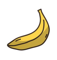 Delicious fresh banana organic fruit vector