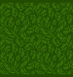 Herbs seamless pattern dill endless background vector