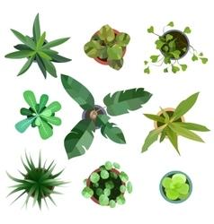 Top view plants easy copy paste in your landscape vector