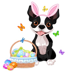 Boston terrier with Easter basket vector image