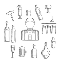 Bartender with alcohol and cocktails vector image