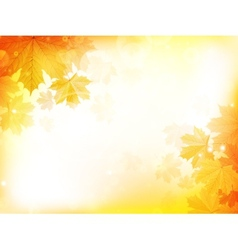 Autumn design background with leaves vector image