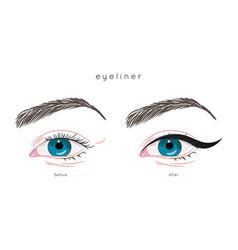 eye make up tutorial how to apply eyeliner vector image vector image