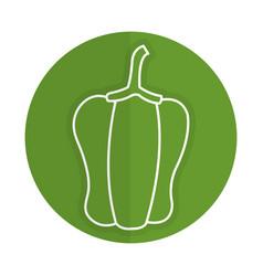 Pepper fresh vegetable icon vector