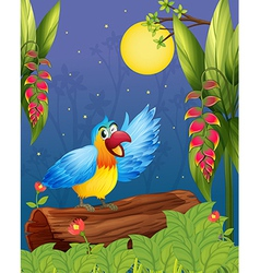 A colorful parrot in the middle of the woods vector