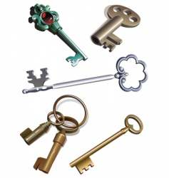Old keys vector