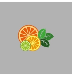 Fruit and mint vector