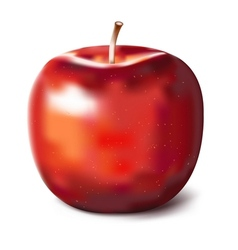Hand painted red apple vector