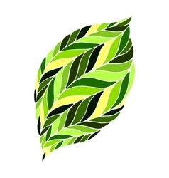 image of a leaf in shades of green on a vector image vector image