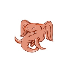 Republican elephant mascot head etching vector