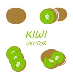 Flat kiwi icons set vector
