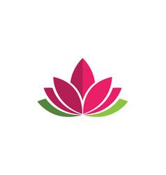 Beauty flowers design vector