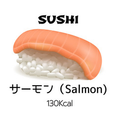 nigiri sushi isolated vector image
