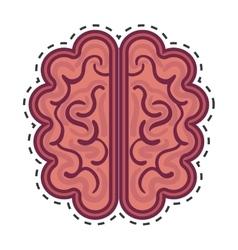 Brain organ human isolated icon vector