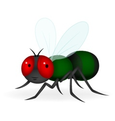 Green fly cartoon vector image vector image