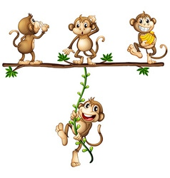 Monkeys swinging vector image vector image