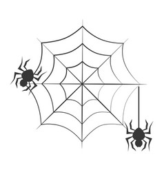 Monochrome background halloween and spiders vector