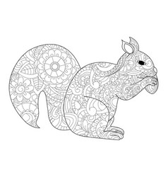 Squirrel with nut coloring for adults vector