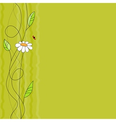Floral background with ladybird vector