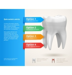 Dentistry infographics vector image