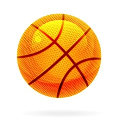 orange basket ball vector image vector image
