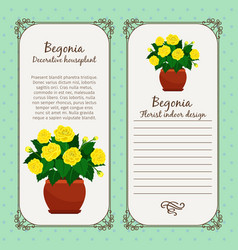 Vintage label with begonia plant vector